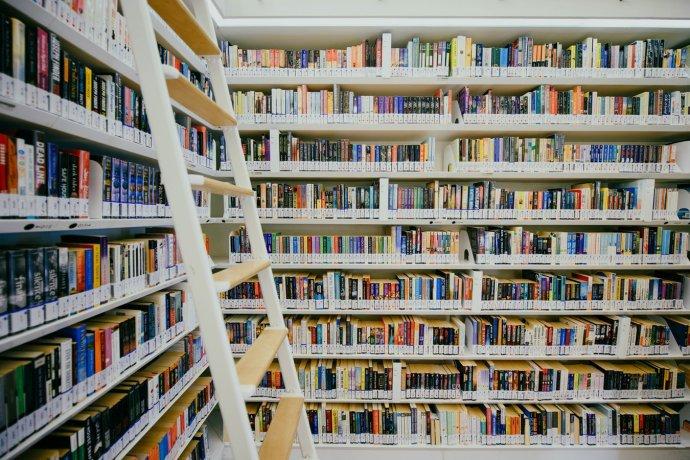 Kanadské školní knihovny jsou skvěle vybaveny množstvím výborných knih. Foto: Unsplash