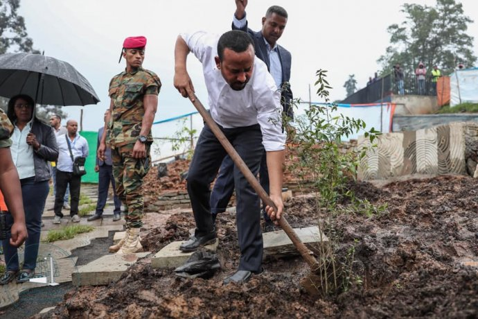 Etiopský premiér adržitel Nobelovy ceny za mír 2019 Abiy Ahmed sází strom vrámci celostátní akce vysazení světově rekordních čtyř miliard stromů Green Legacy. Foto:úřad premiéra, facebook.com/PMOEthiopia