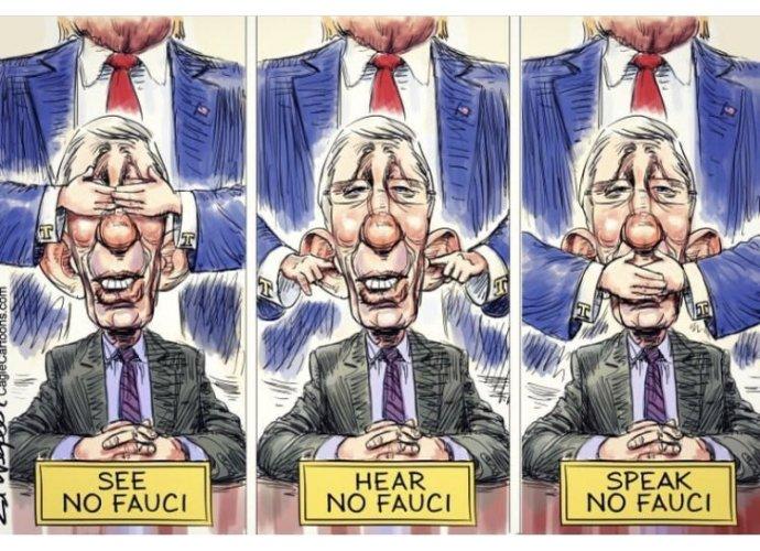 Anthony Fauci má vysokou podporu mezi veřejností, s prezidentem se ale názorově neshodovali na vedení vládní reakce vůči pandemii koronaviru. Trump ke konci období sliboval, že se ho po vítězství ve volbách zbaví. Karikatura: Ed Wexler, PoliticalCartoons