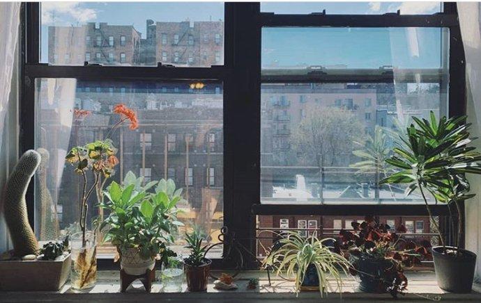 Program WindowSwap vznikl během pandemie, aby se lidé vizolaci podělili osvé výhledy zokna. Autorkou tohoto záběru je Melissa zNew Yorku. Bydlí vBronxu atakhle to vypadá, když se dívá zokna. Foto:Instagram.com/WindowSwap