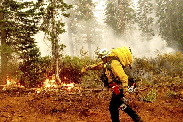 Šéf kalifornských hasičů Craig Newell nese hadici, zatímco bojuje s požárem v Národním parku Plumas v Kalifornii. Foto: Noah Berger, AP/ČTK