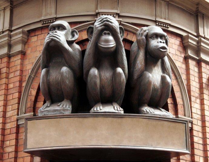 Ta první opice zleva na obrázek vlastně nepatří. Podle ní se dnes většinou neřídíme. Foto:Adobe Stock