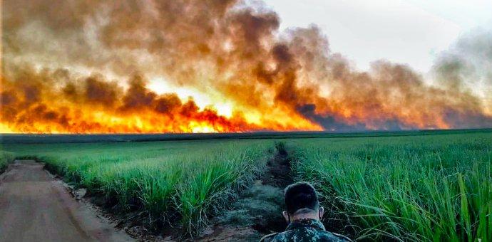 Požár jihoamerického mokřadu Pantanal zasahujícího do tří zemí. Toto místo je v brazilském státě Mato Grosso. Foto: Latin America News Agency / Reuters