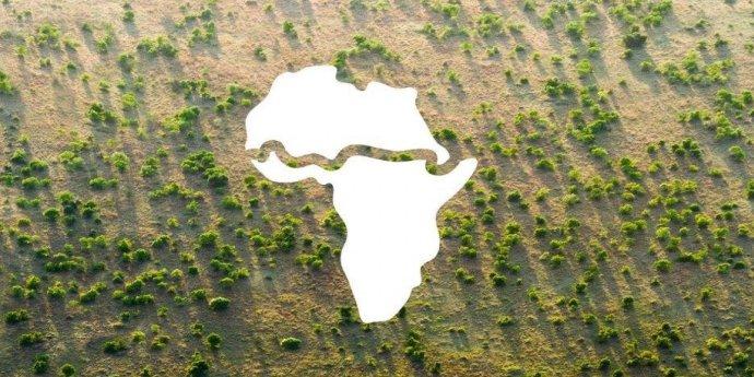 Pás na symbolické mapě Afriky kprojektu Velké zelené zdi– (znovu)zalesnění oblastí pod Saharou scílem zabránit rozšiřování pouště azmenšování Sahelu azemědělských ploch. Zdroj: Africká unie