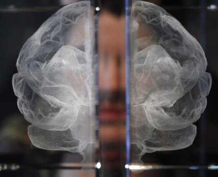 Katherine Dawsonová: Má duše. Zvýstavy Mozky– Mysl jako hmota vLondýně. Foto:ČTK/AP