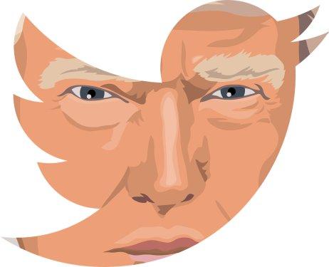 Donald Trump měl na Twitteru 89milionů sledujících. Oty iomožnost veřejně se vyjadřovat na všeobecně sdílené sociální sítí po útoku na Kapitol přišel. Ilustrace: Pixabay