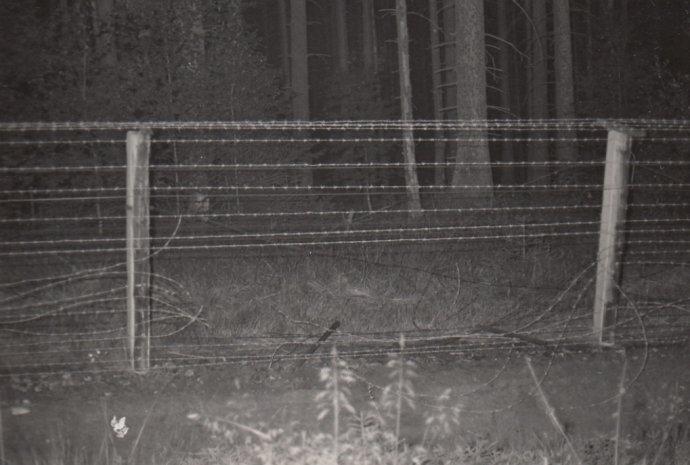 Místo, kde Gerhard Schmidt prostříhal sedm drátů signální stěny. Foto:Ústav pro studium totalitních režimů