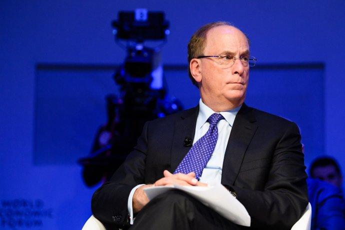 Šéf investiční společnosti BlackRock Larry Fink. Foto:World Economic Forum / Manuel Lopez, CC BY-NC-SA 2.0