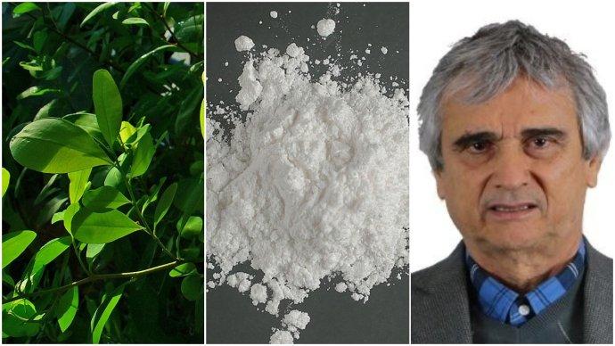 Koka, kokain akolumbijský senátor Iván Marulanda Gómez, který by je chtěl legalizovat. Foto:H. Zell, DEA akolumbijský Senát, koláž DeníkN