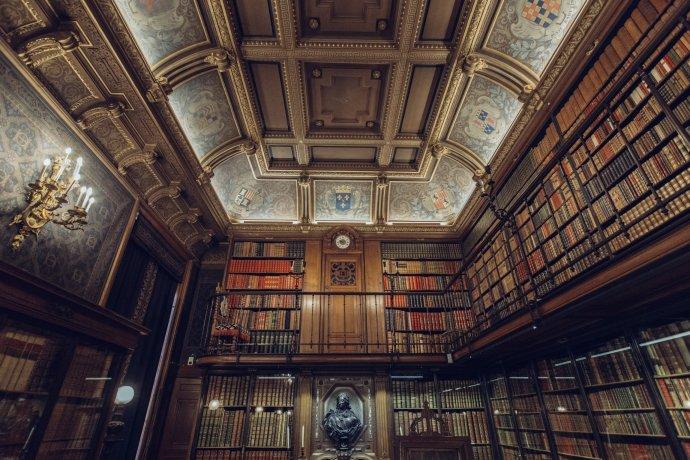 Vztah jednotlivých literátů ke knihovnictví má vknize široký rozptyl. Foto: Gabriel Ghnassia