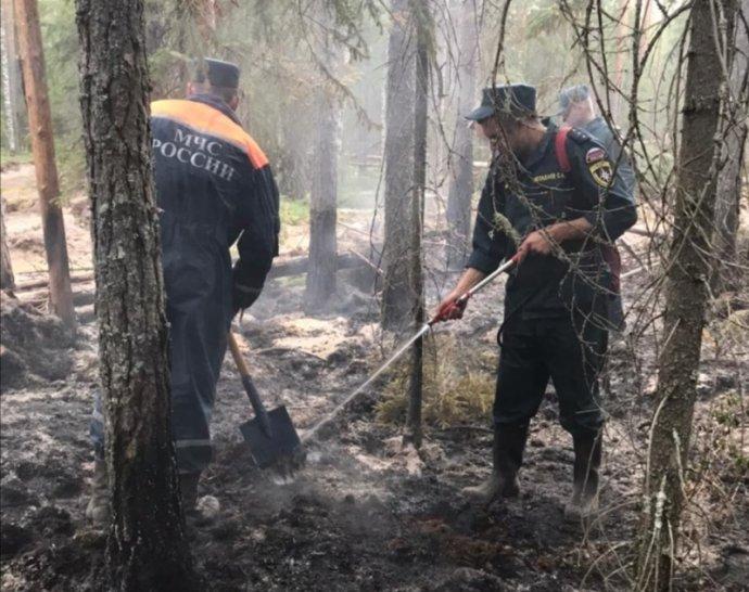 Pracovníci ruského ministerstva pro výjimečné situace se snaží v jakutských lesích vytvářet příkopy, které oheň zastaví. Zdroj: MČS Ruská federace